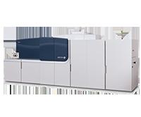 Cipress325--200x166
